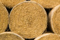 Round straw Royalty Free Stock Photography