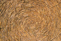 Round straw bale background. Royalty Free Stock Image