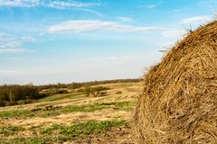 The round straw bale after harvesting against the background of the field and the forest, autumn evening. Round straw bale after harvesting against the Stock Image