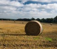 Round Straw Bale,North Yorkshire, UK Stock Photography