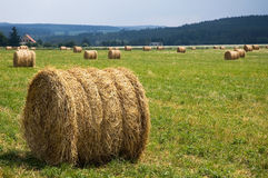 Round straw bales. Straw bales as put in the field Royalty Free Stock Photos