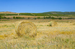 Round Straw bales on farmland Royalty Free Stock Photo