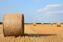 Round straw bales Royalty Free Stock Photo