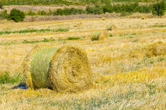 Round Straw bales on field Stock Photos
