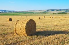Round straw bales on field royalty free stock photography