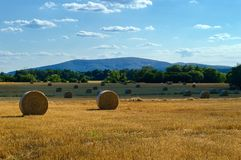 Round straw bales in a field under a blue sky with clouds. stock photo