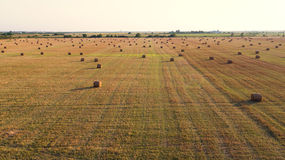 Round straw bales on fields Royalty Free Stock Photography