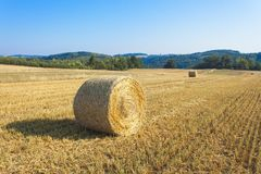 Round straw bales in harvested fields and blue sky without clouds. Beautiful countryside landscape. Stock Photography