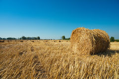 Round straw bales in harvested fields Royalty Free Stock Photography