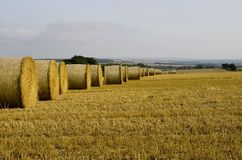 Round Straw Bales Stock Photos