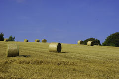 Round Straw bales in a sunny field Royalty Free Stock Images