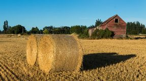 Round Straw Bales. Two round straw bales by a old farm shed Stock Images