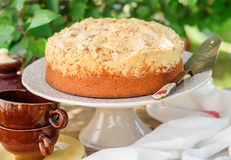 Round Streusel Fruit Cake on a Cake Stand Stock Photo