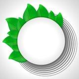 Round sztandar z zielonymi liśćmi Fotografia Stock
