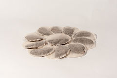 Round Tea Bags. A pile of round Tea bags in a circle and isolated on a white background stock photo