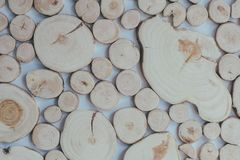 Round teak wood stump background. Eco style, rustic, decor. Sawn trunk of a tree Stock Images