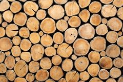Round teak wood stump background use as wall paper. Round teak wood stump background can use as wall paper Royalty Free Stock Images