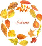 Round template with autumn leaves in watercolor Royalty Free Stock Photo