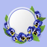 Round text frame with blue pansy flower and green leaf. Vector illustration for spring and nature design, invitation or message Stock Image