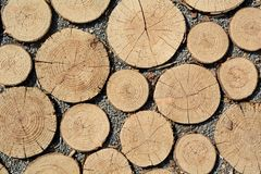 Round timbers Stock Images