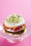 Round tramezzini with cheese, salami, salad and sprouts Stock Photos