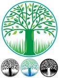 Round tree logo vector illustration