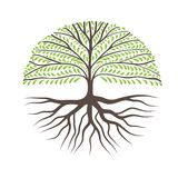 Round Tree With Roots. Can Use as Logo for Your Company royalty free illustration