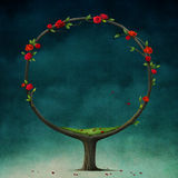 Round tree with roses. Royalty Free Stock Photo