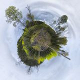 Round trees planet. Trees and forest in a round planet form Royalty Free Stock Image