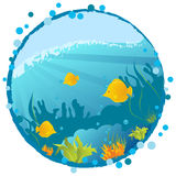 Round underwater background. Round grunge underwater background with fishes, algae and corals Royalty Free Stock Image