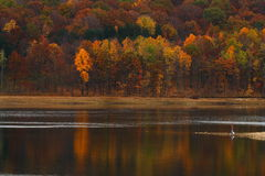 Round Valley Park - Autumn Reflection - Man and Nature Royalty Free Stock Photos