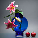 Round vase with orchids and apples on gray Stock Images