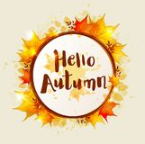 Round autumn banner. Round vector autumn banner with orange falling maple leaves. `Hello autumn` lettering Royalty Free Stock Photo