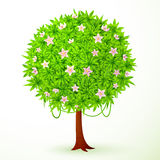 Round vector green tree with flowers Royalty Free Stock Image