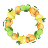 Round watercolor wreath with juicy oranges, mandarins, lemons and lime. Royalty Free Stock Images