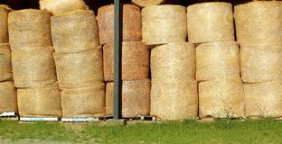 Round wheat bales stacked stock rows golden royalty free stock photo