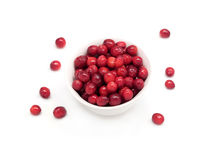 Round white bowl full of cranberries closeup Royalty Free Stock Photos
