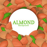 Round white frame on almond nut background. Vector card illustration. Circle Nuts , walnut fruit in the shell, whole Royalty Free Stock Photo