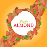 Round white frame on almonds nut diagonal composition background. Vector card illustration. Nuts ,  fruit in the shel Stock Photo