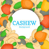 Round white frame on cashew nut background. Vector card illustration. Circle Nuts ,   fruit in the shell, whole, shelled Royalty Free Stock Images