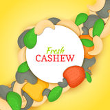Round white frame on cashew nut diagonal composition background. Vector card illustration. Cashewnut frame, filbert Stock Photography