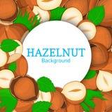 Round white frame on hazelnut background. Vector card illustration. Circle Nuts , walnut nut fruit in the shell, whole Royalty Free Stock Image