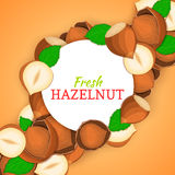 Round white frame on hazelnut nut diagonal composition background. Vector card illustration. Stock Images