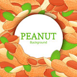 Round white frame on peanut nut background. Vector card illustration. Circle Nuts , walnut fruit in the shell, whole Stock Photo