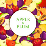 Round white frame on ripe apple plum background. Vector card illustration. Delicious fresh and juicy plums apples peeled Royalty Free Stock Photos