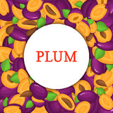 Round white frame on ripe plums background. Vector card illustration. Delicious fresh and juicy plum whole, peeled Royalty Free Stock Photography
