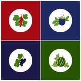 Round White Fruit Icons on Colorful Background Stock Photo