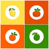Round White Fruit Icons on Colorful Background Stock Photos