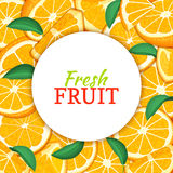 Round white label on citrus orange fruit background. Vector card illustration. Tropical fresh and juicy oranges fruit frame peeled piece of half slice for Stock Photos