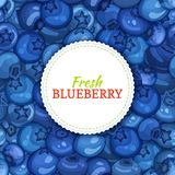 Round white label on ripe blueberry background. Vector card illustration. Blue berry fresh and juicy bilberry frame for Stock Photos